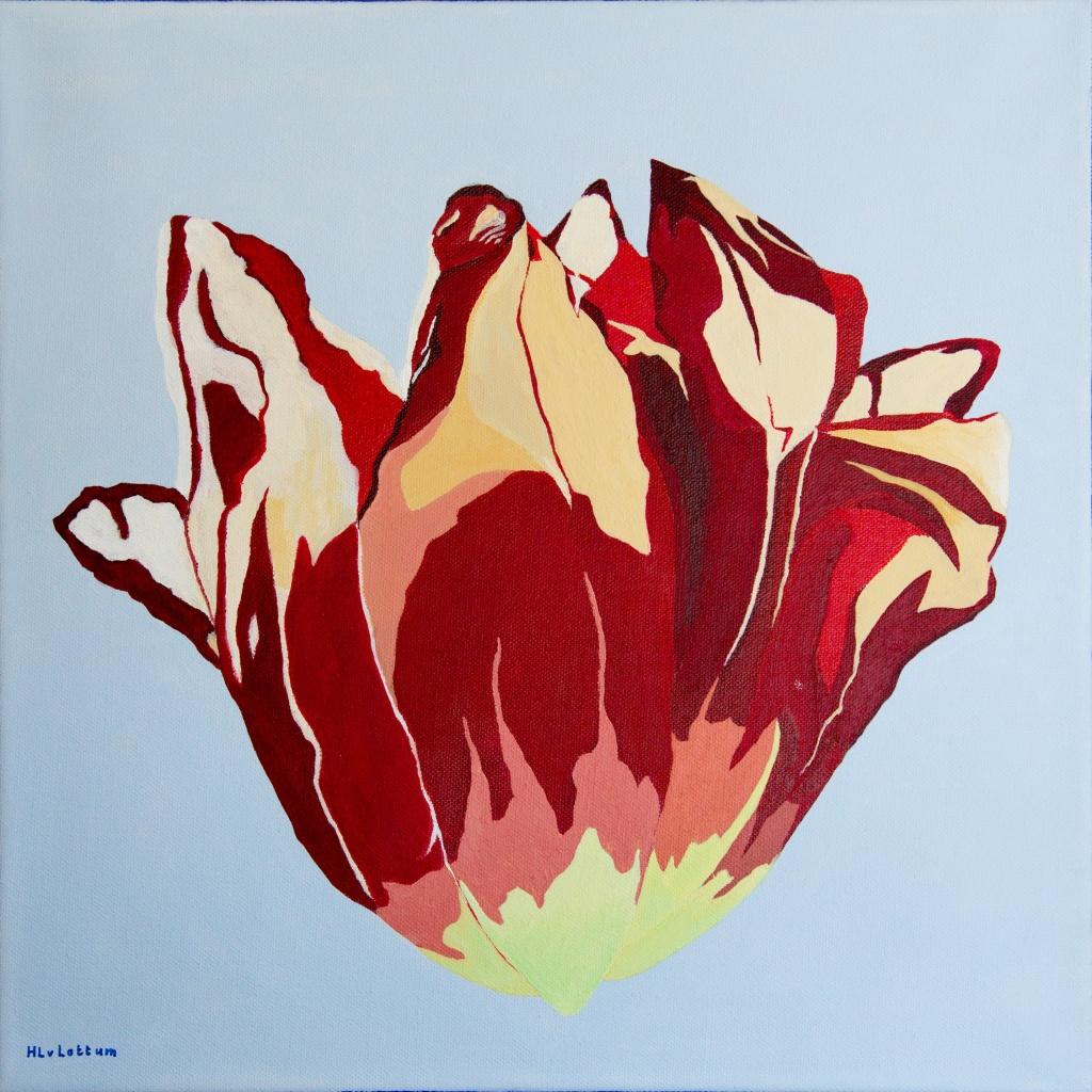 Tulp - acryl op canvas 40 x 40 cm