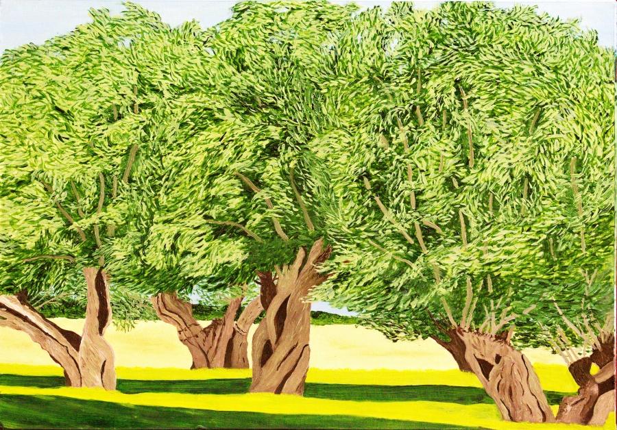 Wilgen - olieverf op passe-partout karton - 39,5 x 28 cm