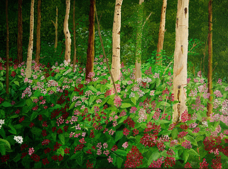 Bos met judaspenning - acryl op canvas - 80 x 60 cm