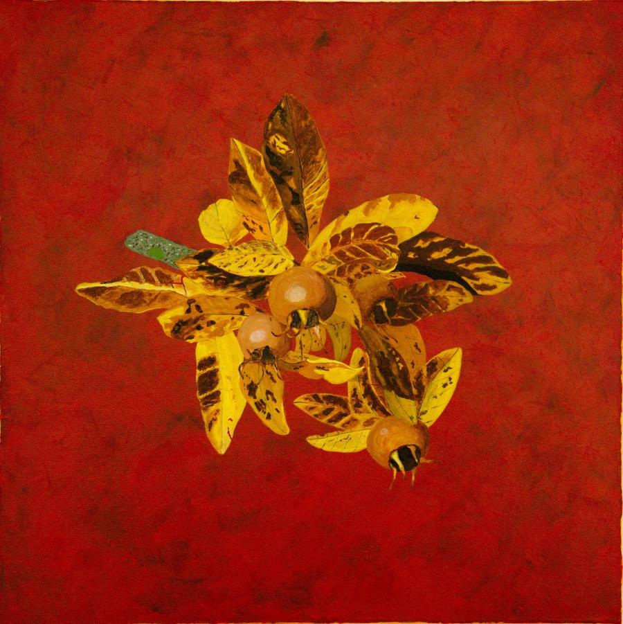 Mispel - acryl op canvas - 50 x 50 cm