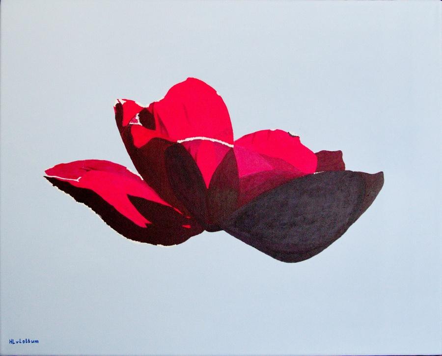 Anemoon - acryl op canvas - 50 x 40 cm