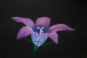 Weideklokje - acryl op karton - 22,5 x 16 cm