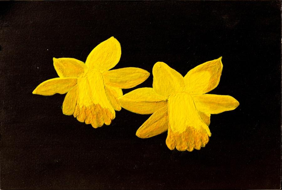 Narcisjes - acryl op karton - 22,5 x 16 cm