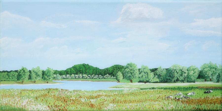IJssel bij de Rammelwaard – acryl op doek – 40 x 20 cm