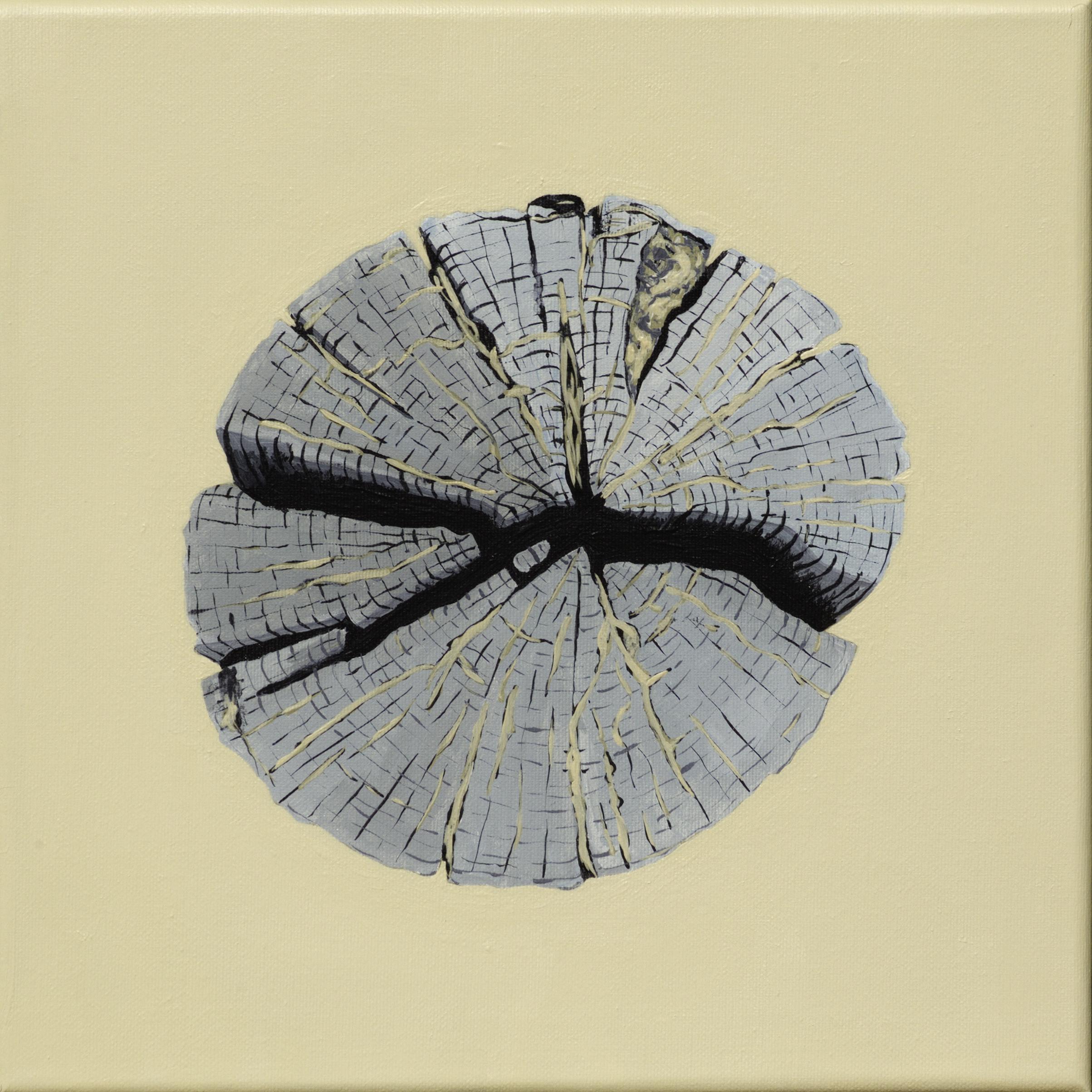 Paalkop 12 - acryl op canvas - 30 x 30 cm