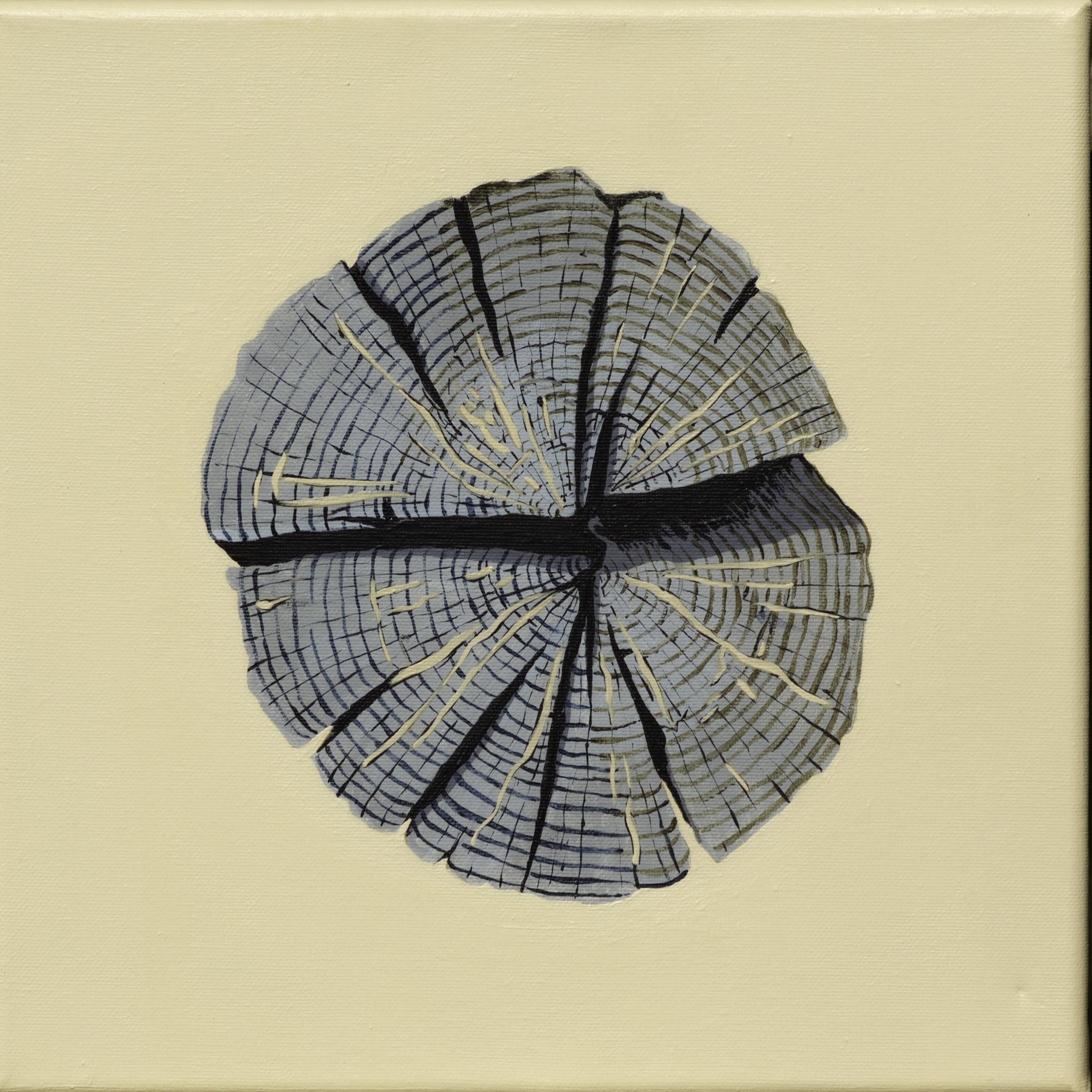 Paalkop 13 - acryl op canvas - 30 x 30 cm