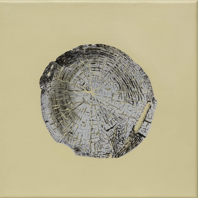 Paalkop 19 - acryl op canvas - 30 x 30 cm