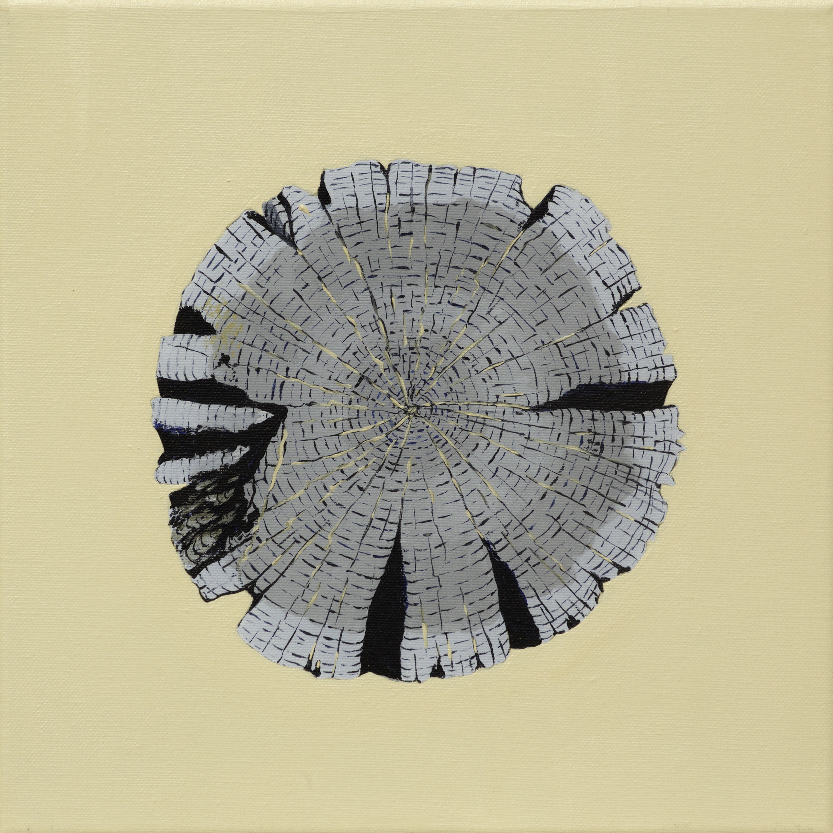 Paalkop 2 - acryl op canvas - 30 x 30 cm