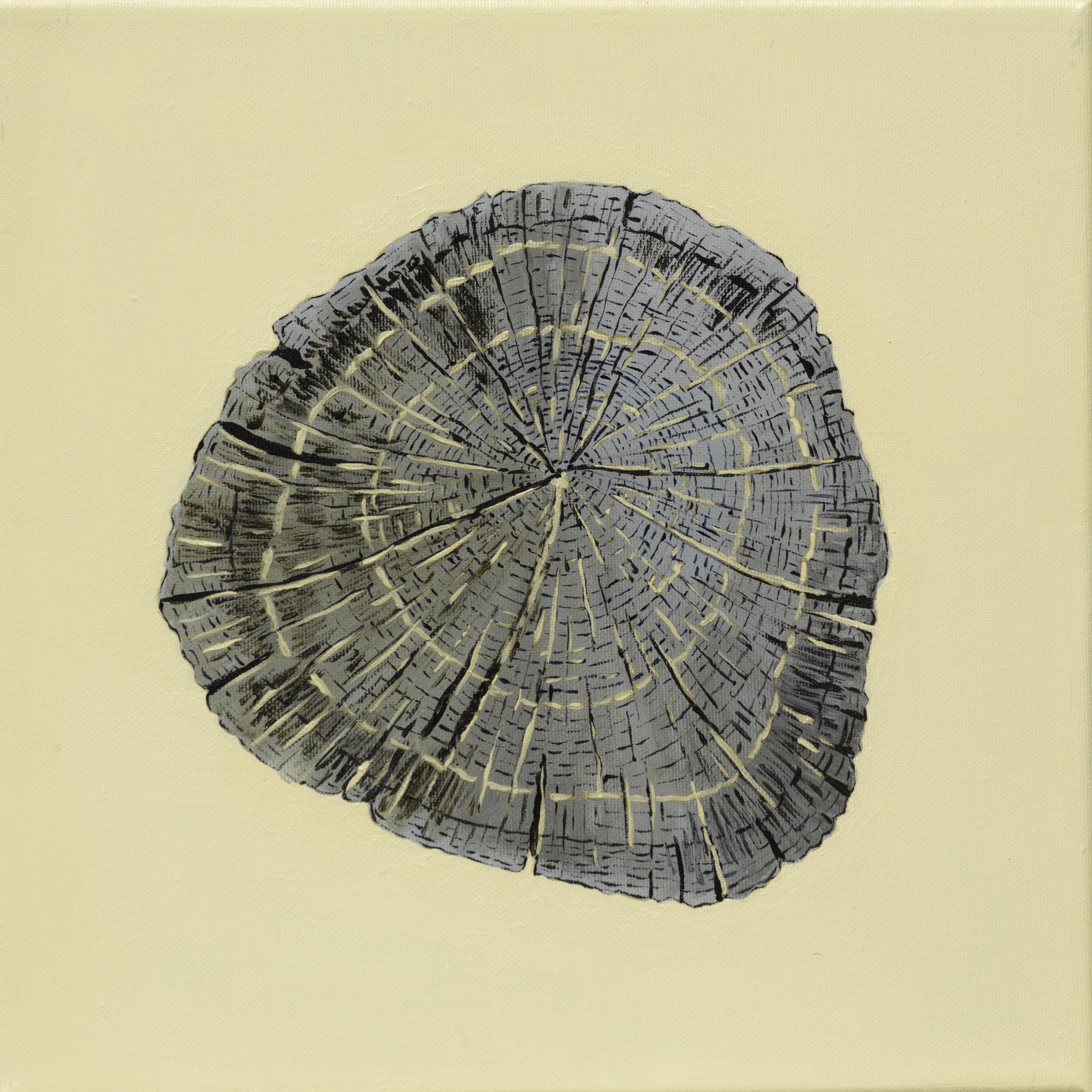 Paalkop 5 - acryl op canvas - 30 x 30 cm