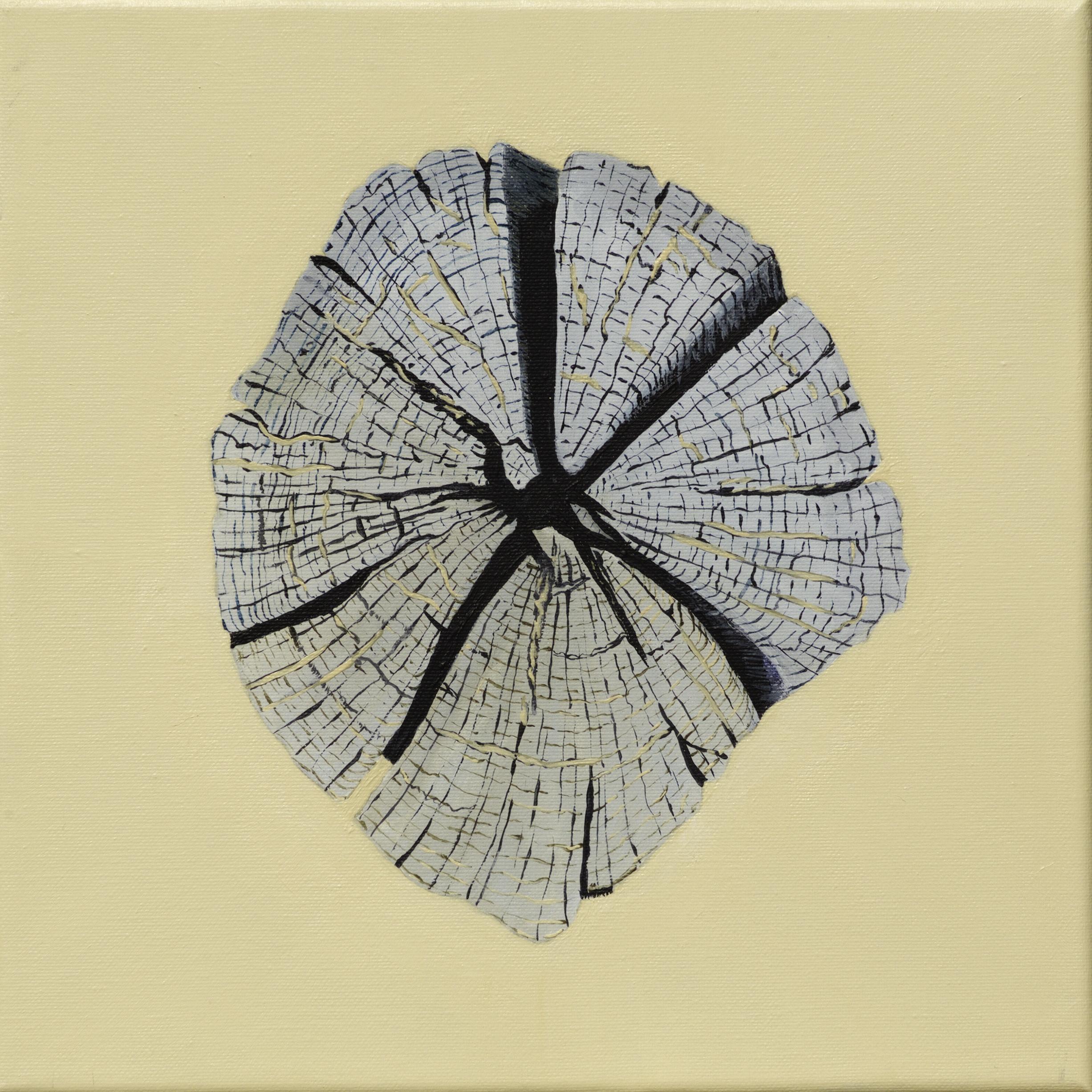 Paalkop 9 - acryl op canvas - 30 x 30 cm