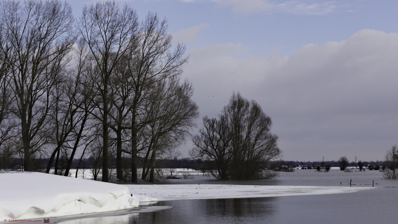 Sneeuw en hoog water - Gorssel Ravenswaarden