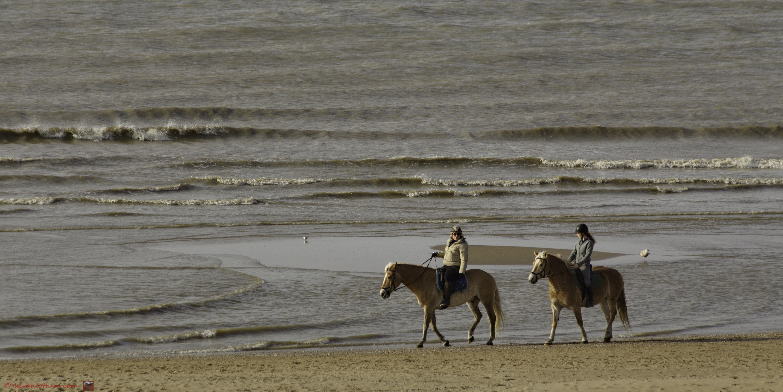 Relaxed in het zonnetje - strand bij Katwijk