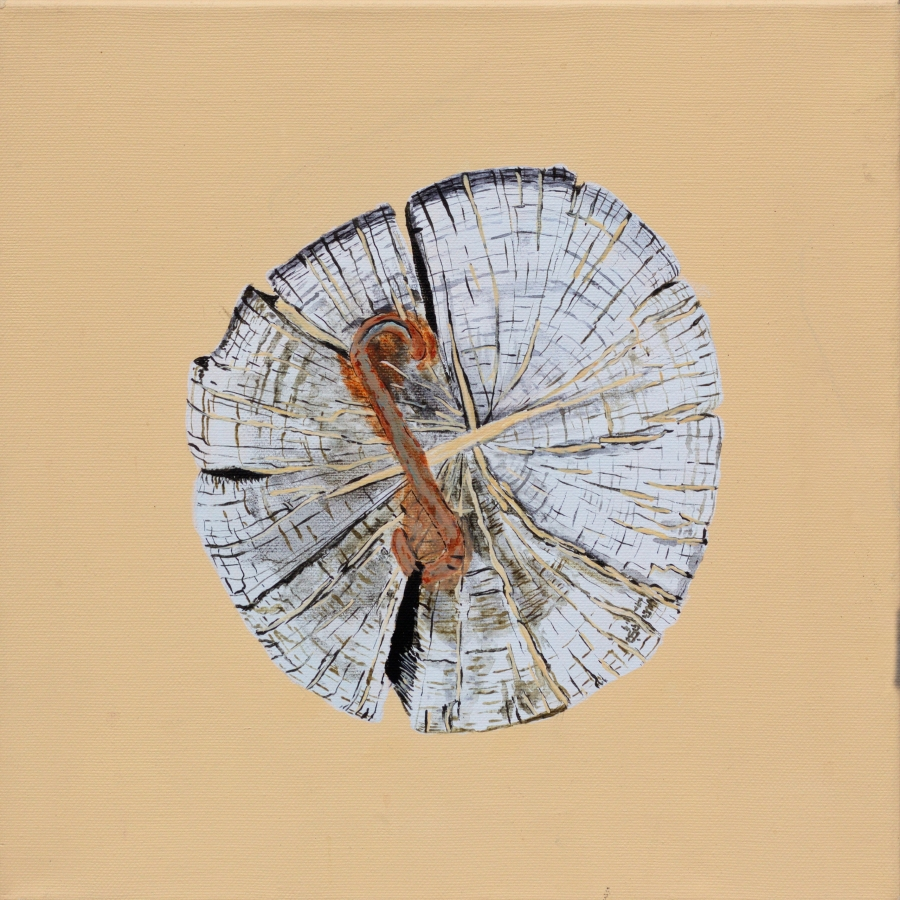 Paalkop 25 - acryl op canvas - 30 x 30 cm