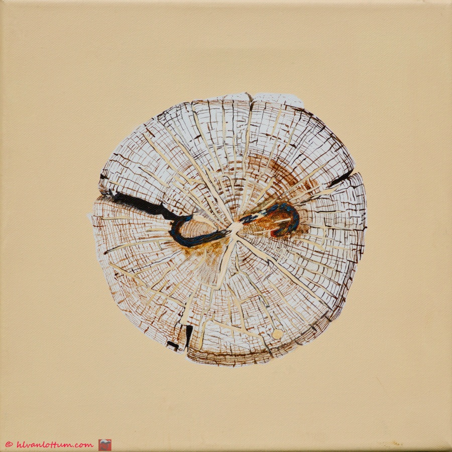 Paalkop 27 - acryl op canvas 30 x 30