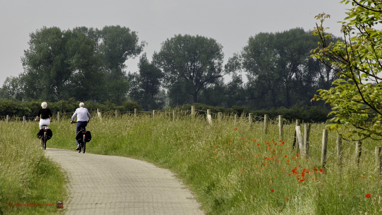 Ravensweerdsweg - Gorssel
